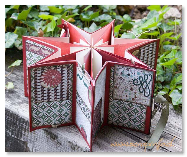 2 étoiles de Noël